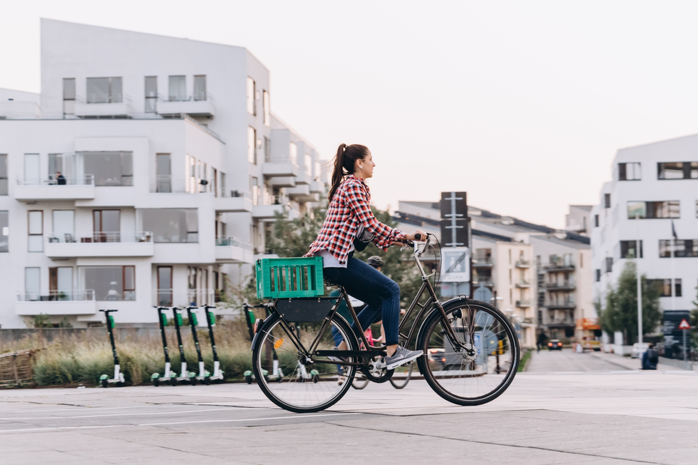 https://www.bikebudget.nl/webshop/fietskratten/